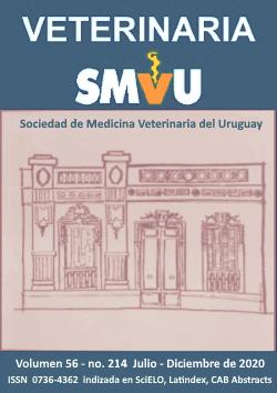 Ver Vol. 56 Núm. 214 (2020): Julio - Diciembre 2020